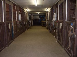 Redwood Stables Boarding Stalls