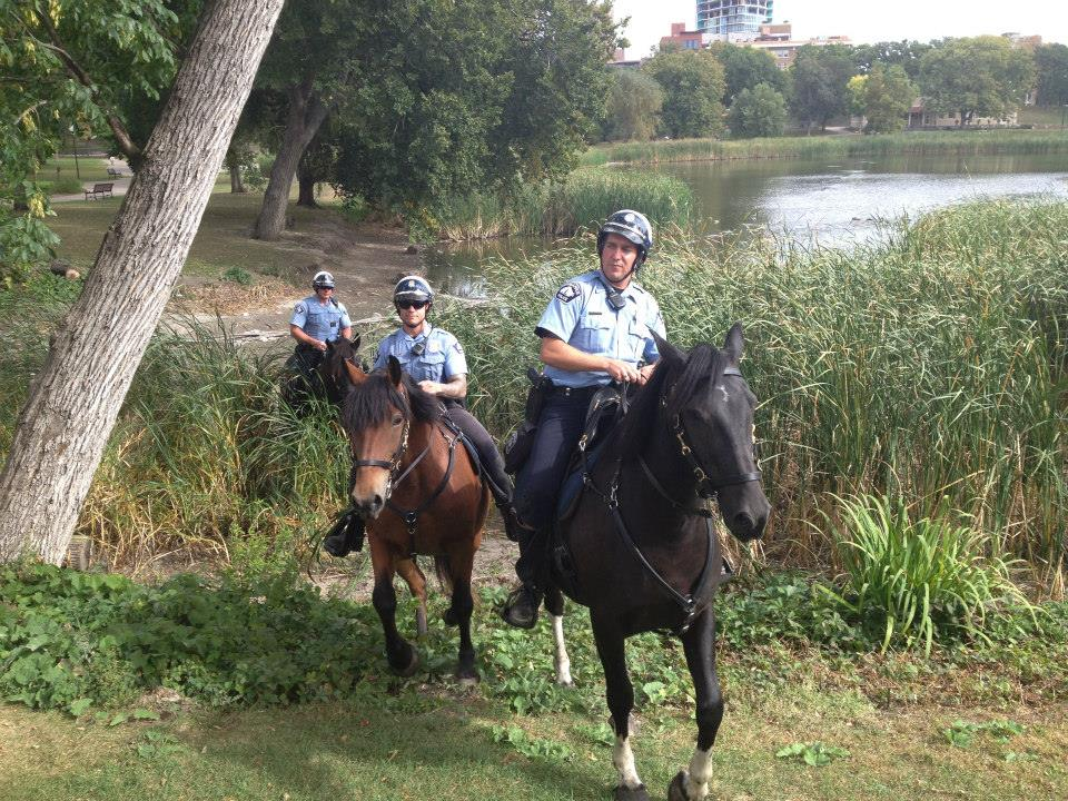 Law-Enforcement-Horses-At-Work-1