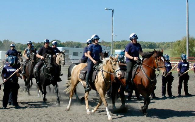 Mpls Police in Training Photo 2