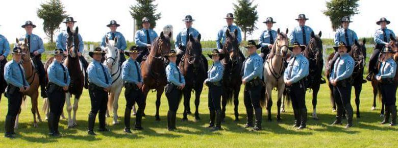 Law Enforcement Equine Training