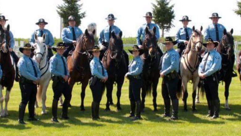 Law Enforcement Equine Training