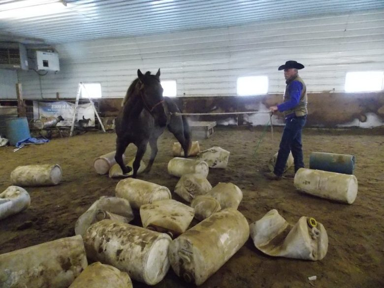 Lunging Through the Barrels